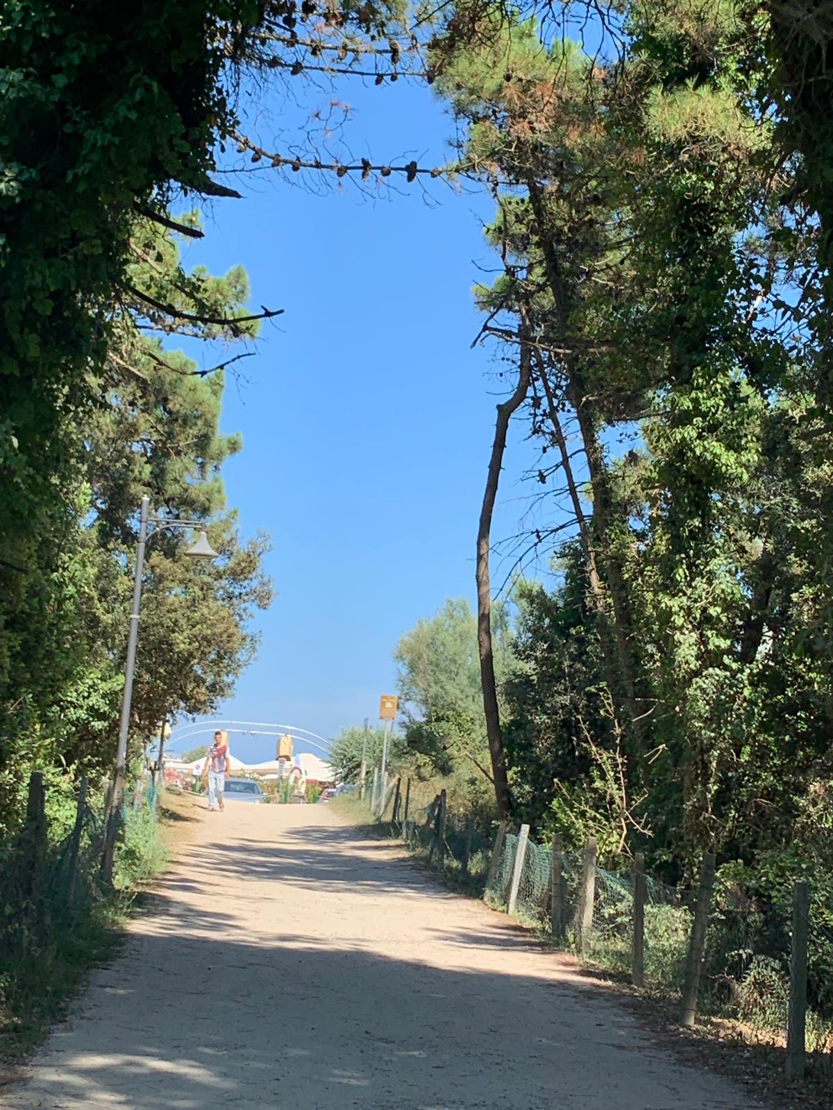 Summer-Camp-2019-033